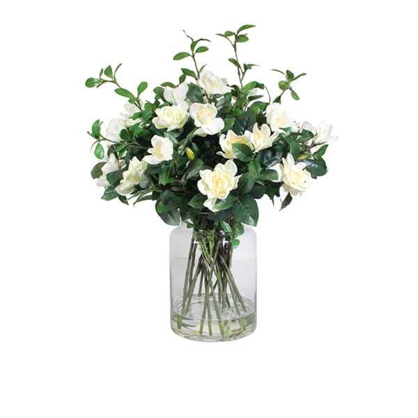 https://www.flower-genie.co.uk/profile/Cream Gardenia in Bottle Vase